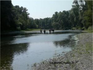 A cavallo sul fiume Oglio.