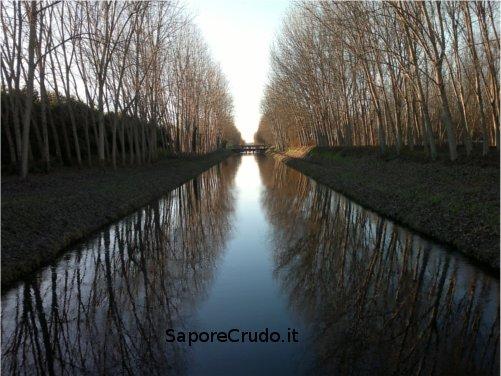 Canale Vacchelli, che pace, che armonia e che serenità.